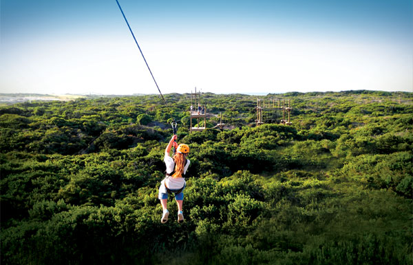 Base Camp Adventures Ziplining Port Elizabeth