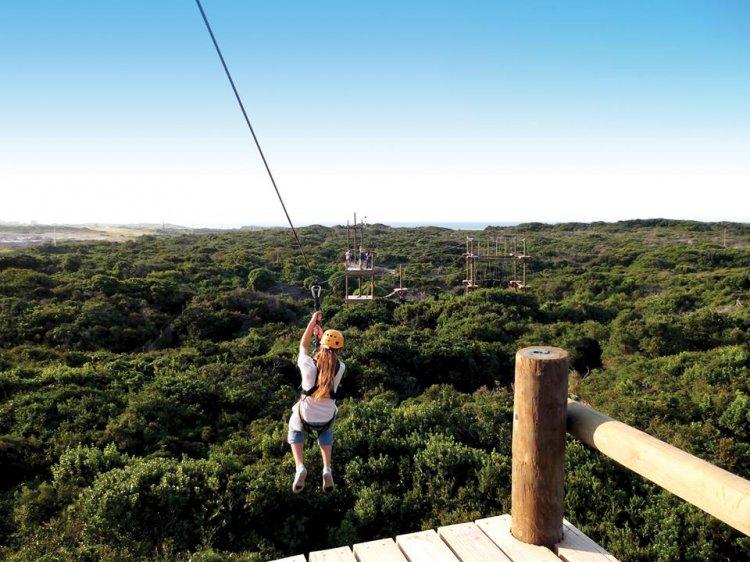 Zip-lining port elizabeth fun adventure activities basecamp adventures